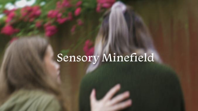 Sensory Minefield Image